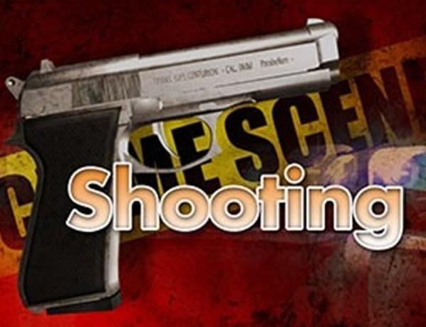 Shooting Logo_-8069130838945018783