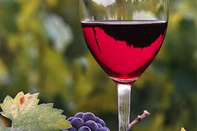 Plant it Forward with Starr Hill Winery_3037730951680052793