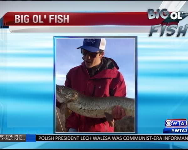 02-18-16 - Big Ol Fish_20160219042114