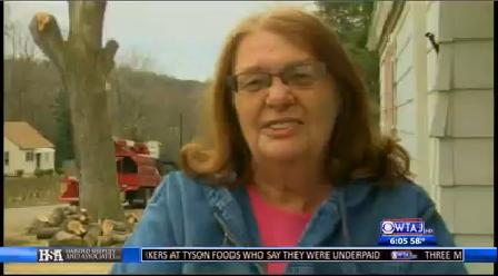 bigler tree cut down upset homeowner 1