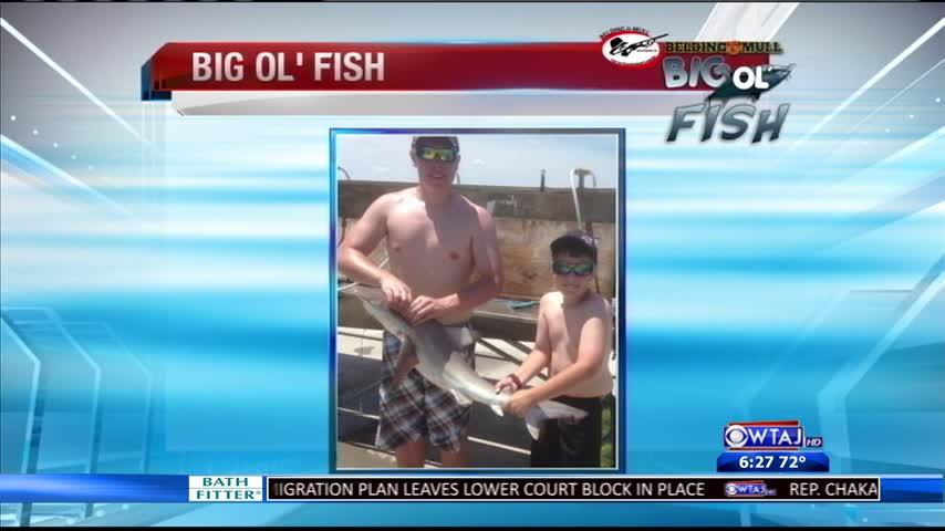 6-23-16 - Big Ol- Fish_20160624040020