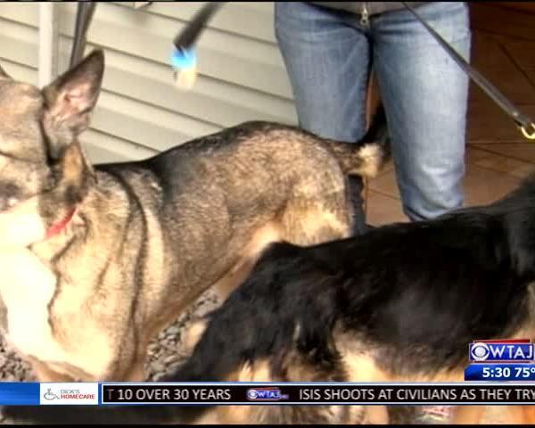 Habitat for hounds gets new officer_56987642-159532