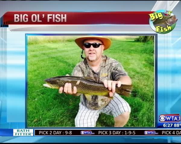 7-14-16 - Big Ol Fish_20160715040003