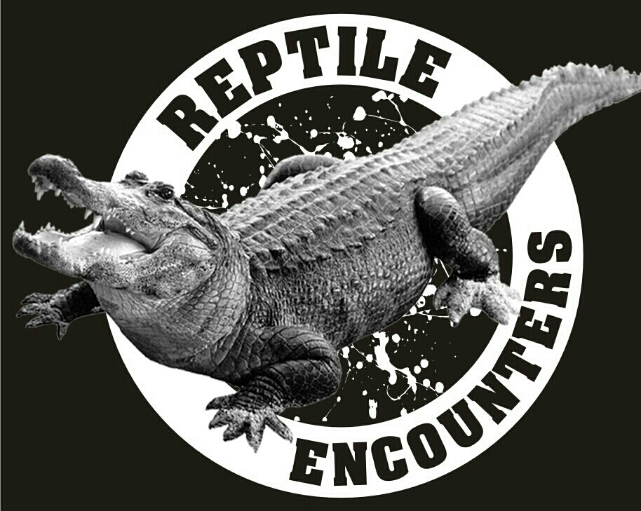 Reptile Encounters_1436981934628.JPG
