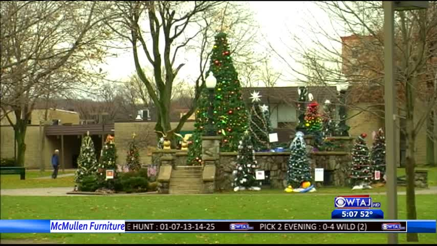 Town Gets In Christmas Spirit With 19 Trees_44116127-159532
