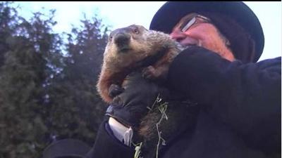 Punxsutawney-Phil-on-Groundhog-Day-jpg_20160208201747-159532