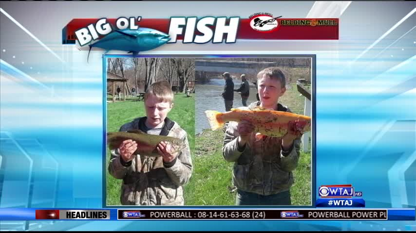 Big Ol' Fish (4/13/17)