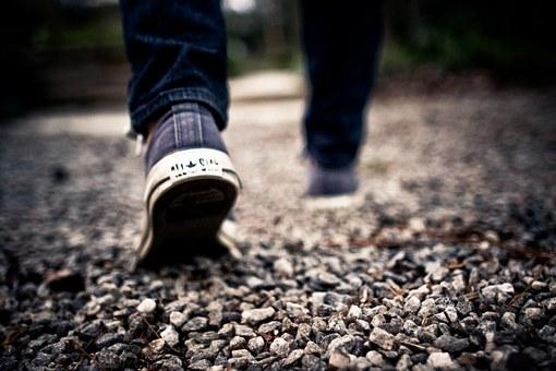walking foot_1491421668094.jpg