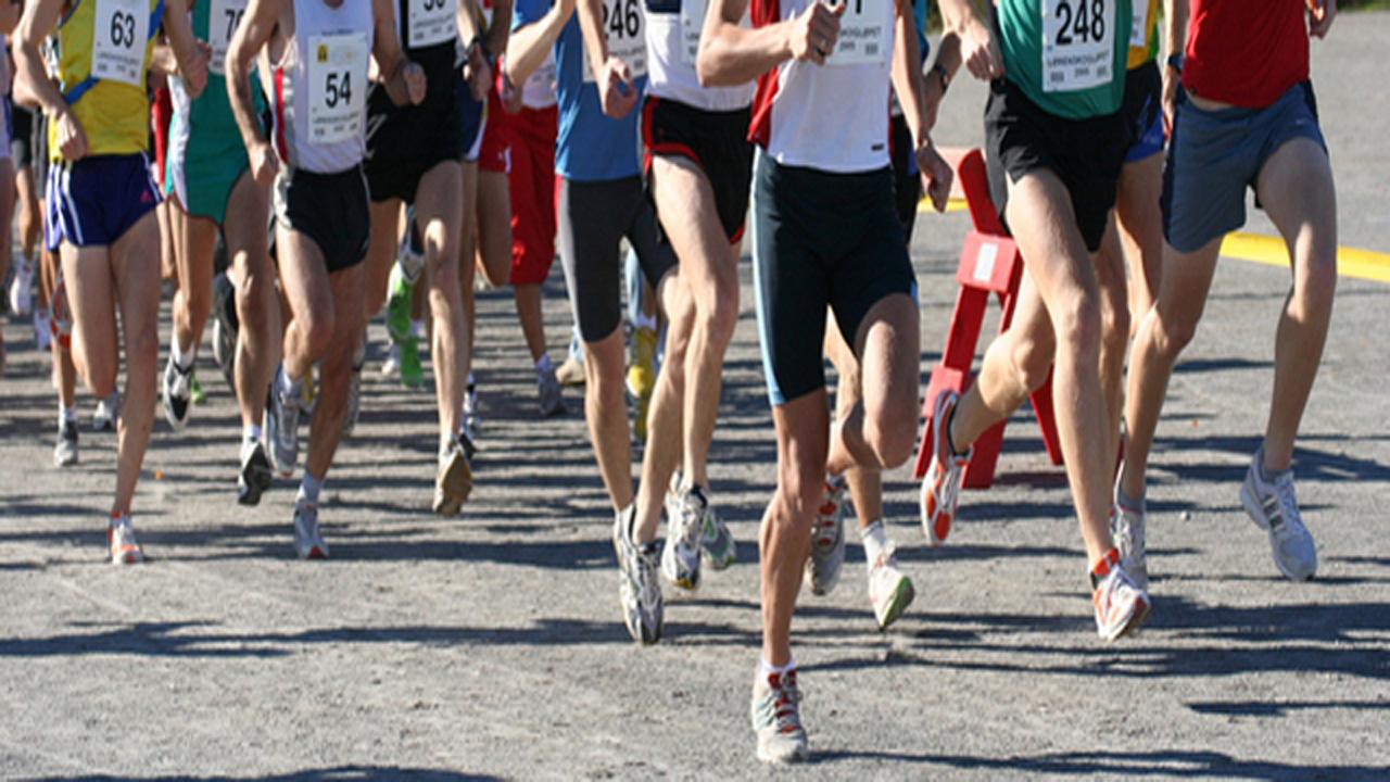 runners-159532.jpg51165845
