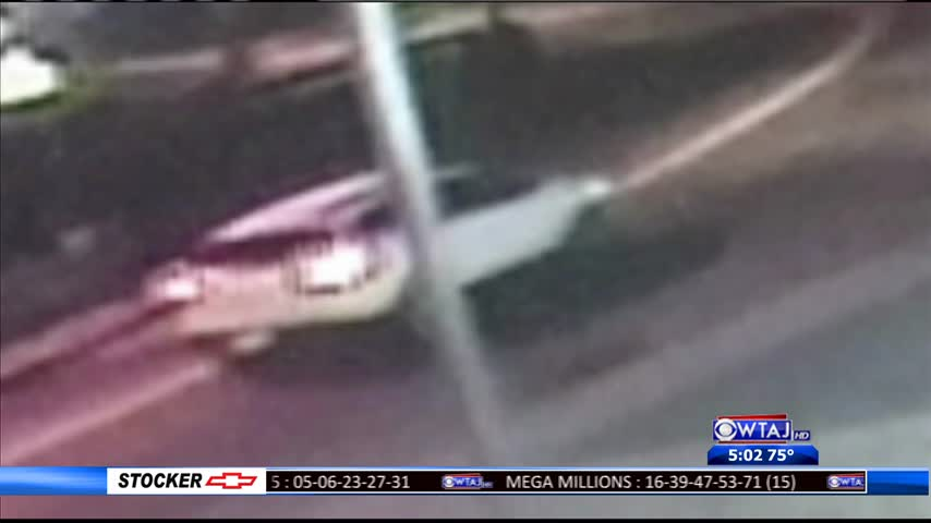 Cambria County fatal hit-and-run
