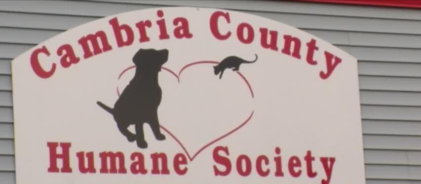 Cambria County Humane Society names new executive director_98016471