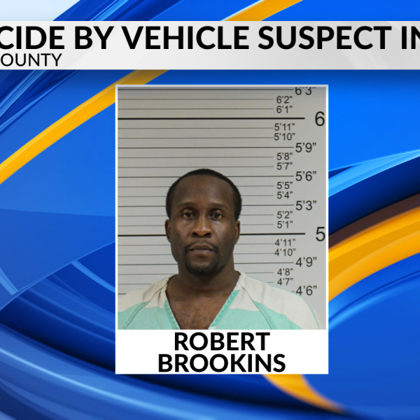 homicide by vehicle in court_1510232266140.png