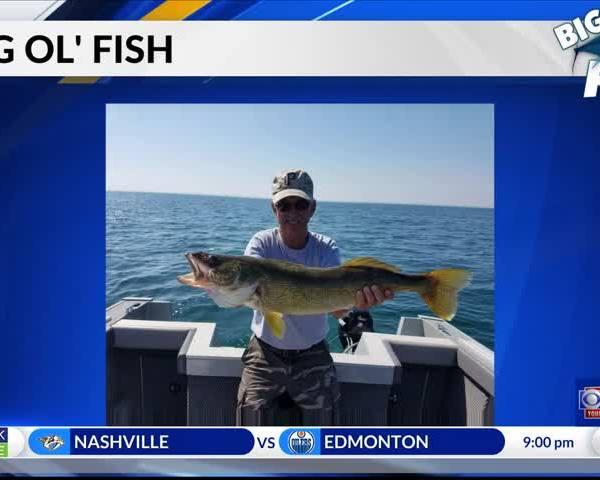 Big Ol- Fish - -12-14-17-_06644845