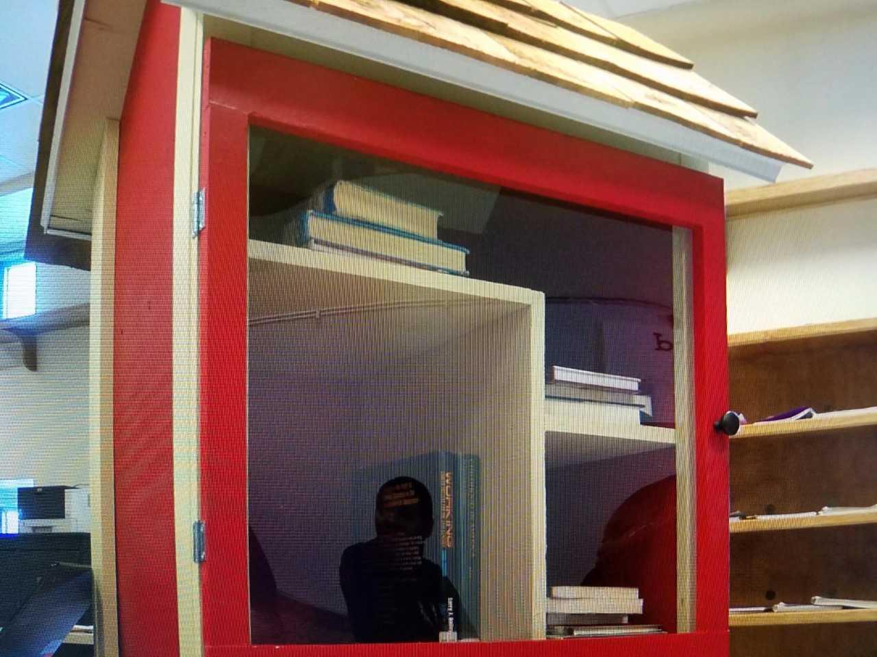 little library_1519686273680.jpg.jpg