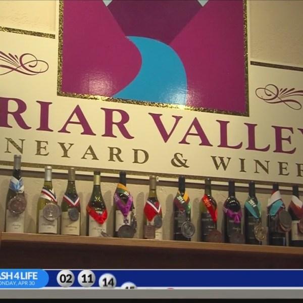 Wine_Week___Briar_Valley_Vineyard_and_Wi_0_20180503113756