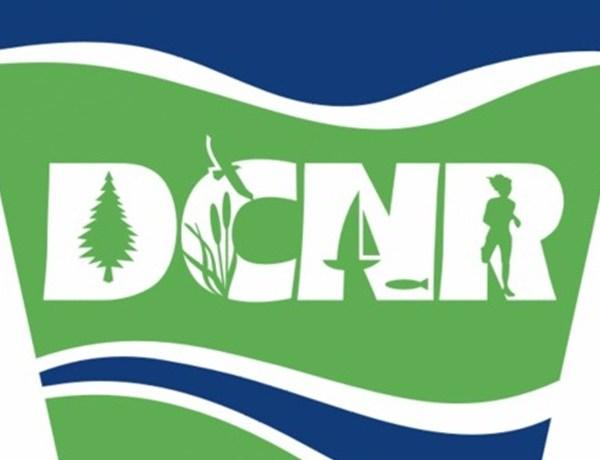 DCNR Logo_-3539022288198219613