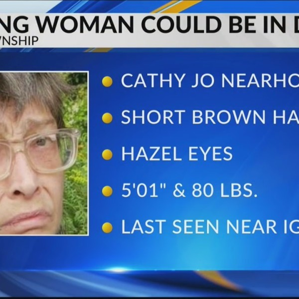 Missing woman could be in danger