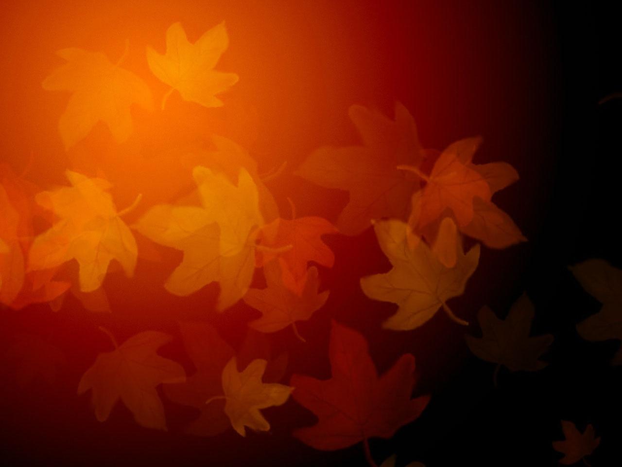 fall bck_1536268800188.jpg.jpg