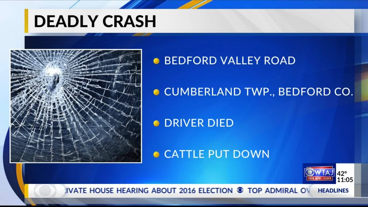 Driver__cows_killed_in_Bedford_County_cr_6_20181203060635