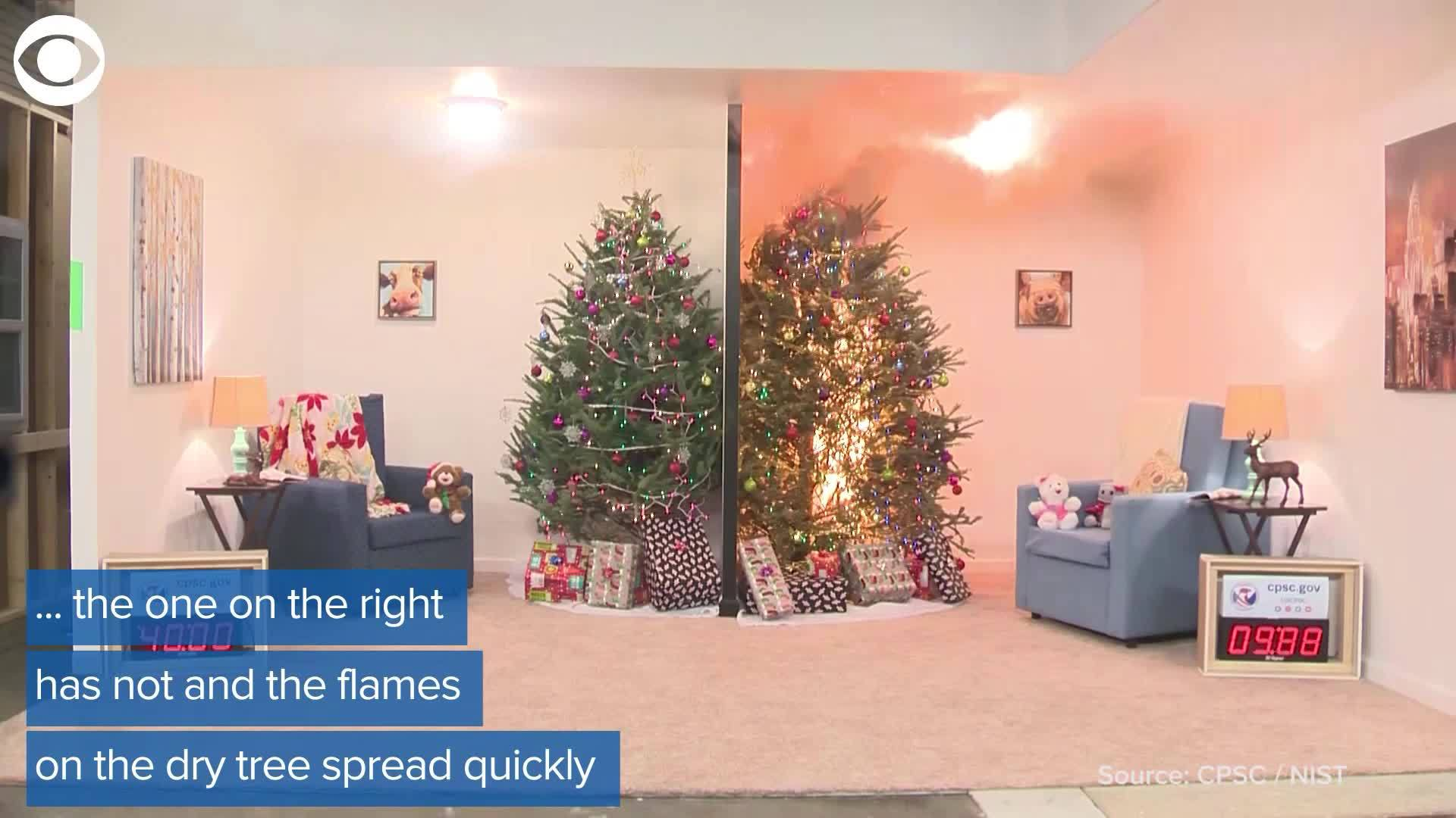 WEB_EXTRA__Holiday_fire_dangers_6_20181210165141