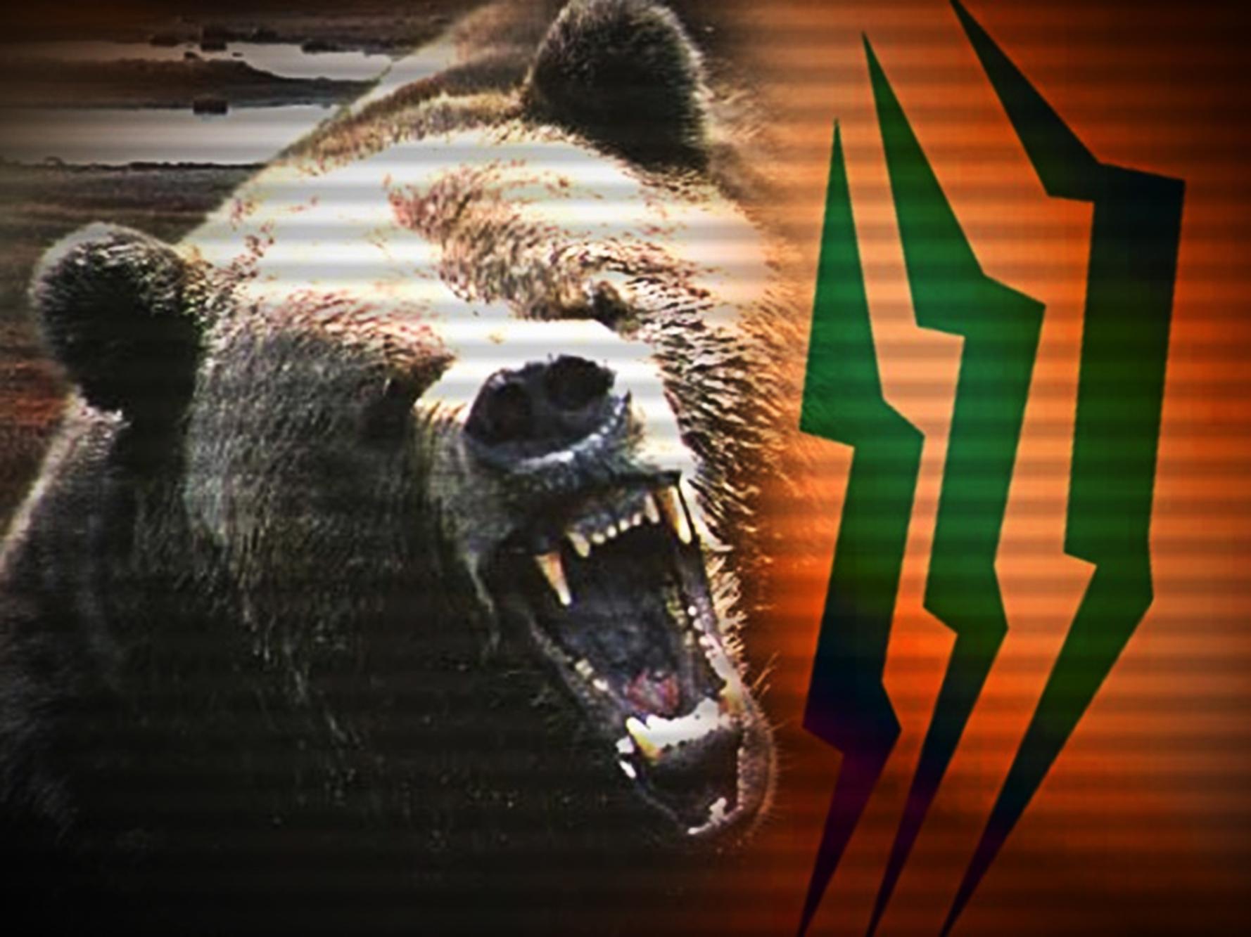 BearAttack_1550087185387.jpg