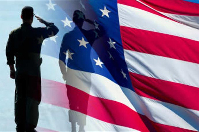 Honoring Our Veterans License Plate_226906835534956590