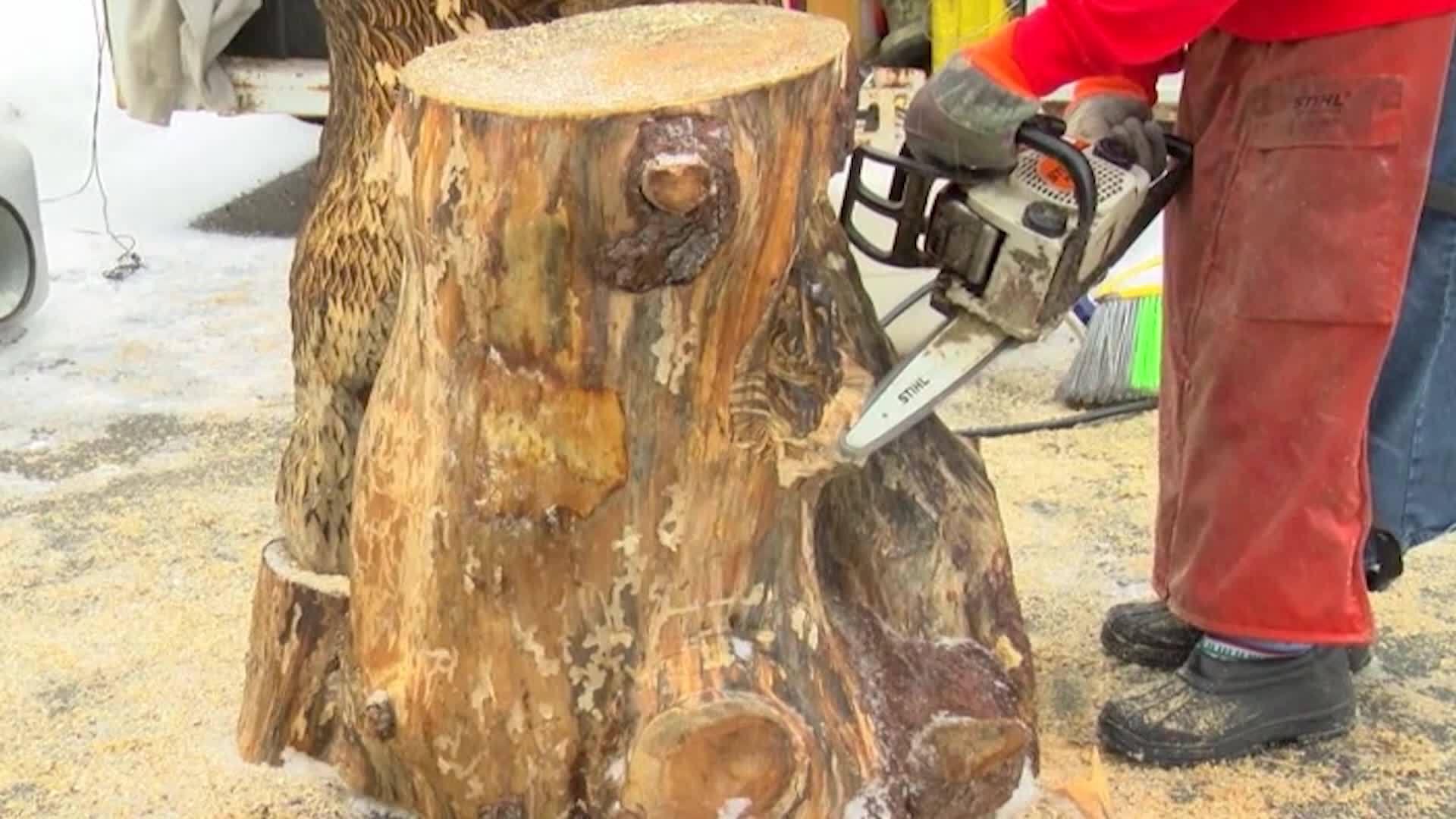 WTAJ_Originals__Chainsaw_carving_festiva_0_20190205205044