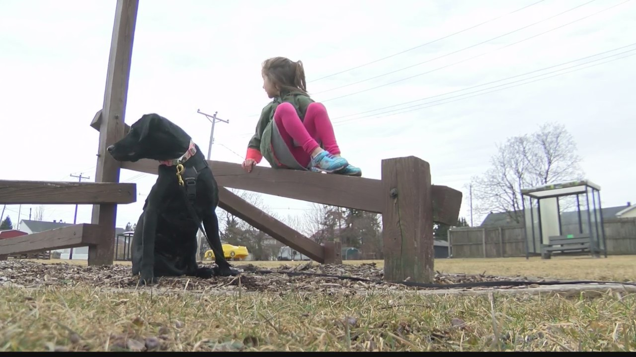 5-year-old gets service dog to help with peanut allergy