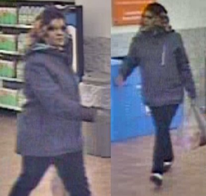 SC fraud suspect_1552592530664.PNG.jpg