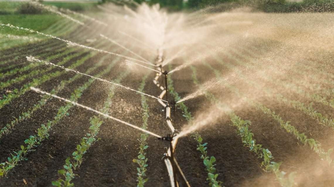 WEB19-WeatherClimate-IrrigatingFields-4224x2376_1553282995323.jpg