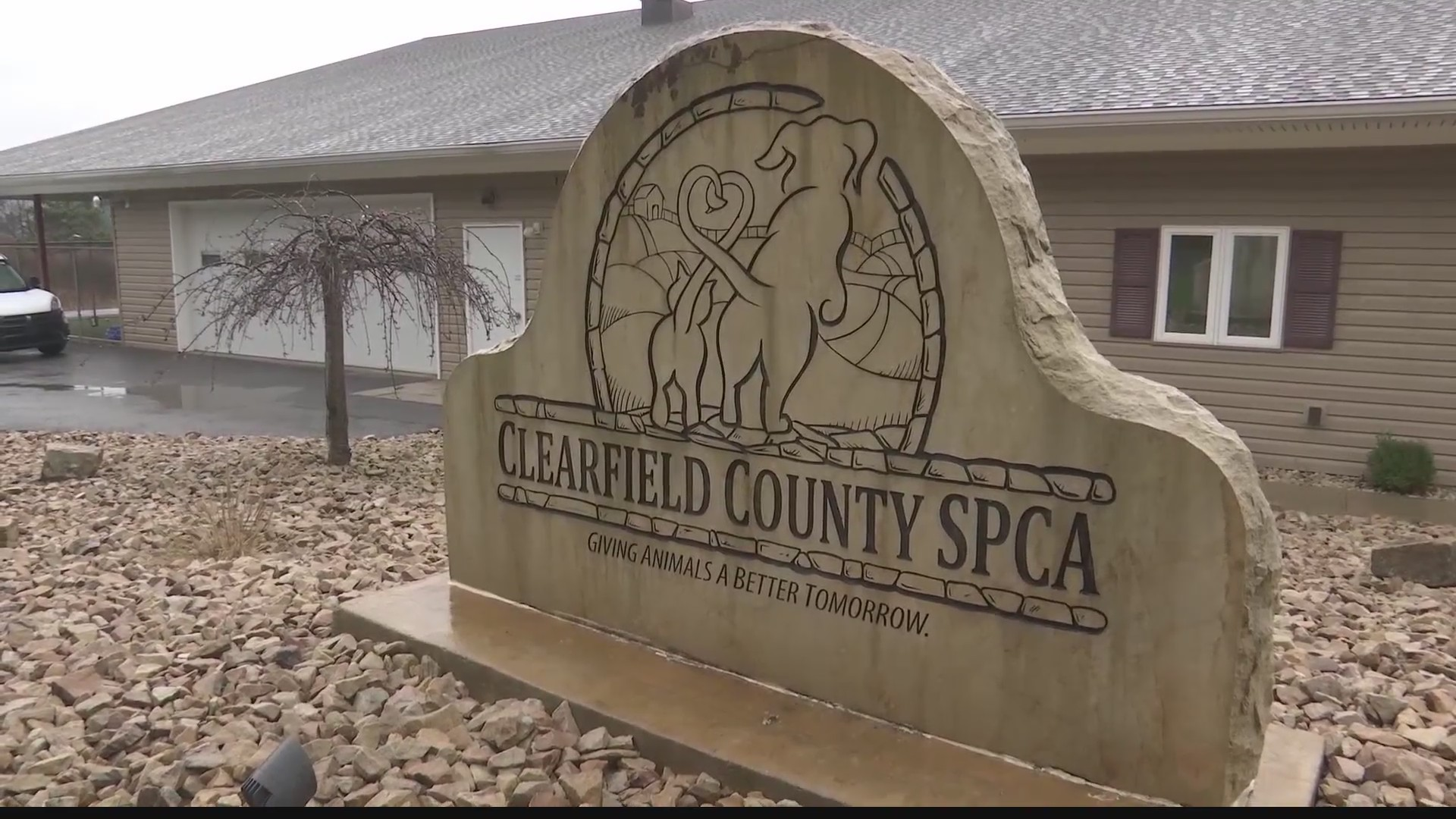 Animal shelter warns against Easter pet adoptions