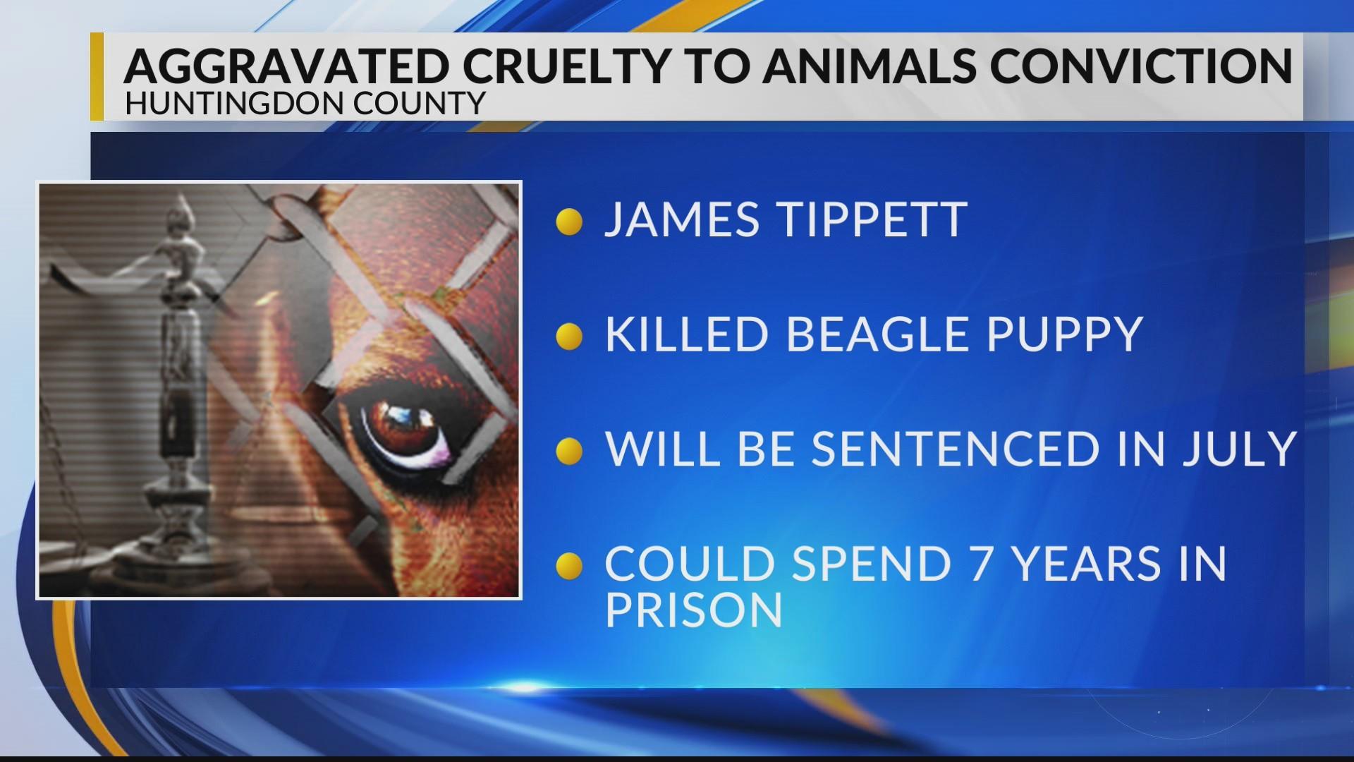 Aggravated Cruelty to Animals Conviction