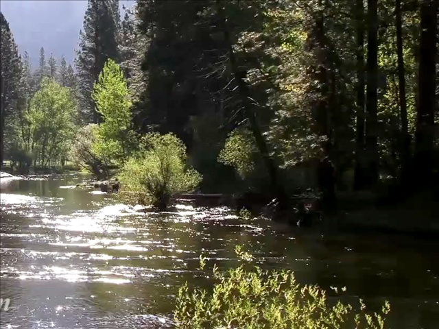 River_gen_1554330699578.jpg