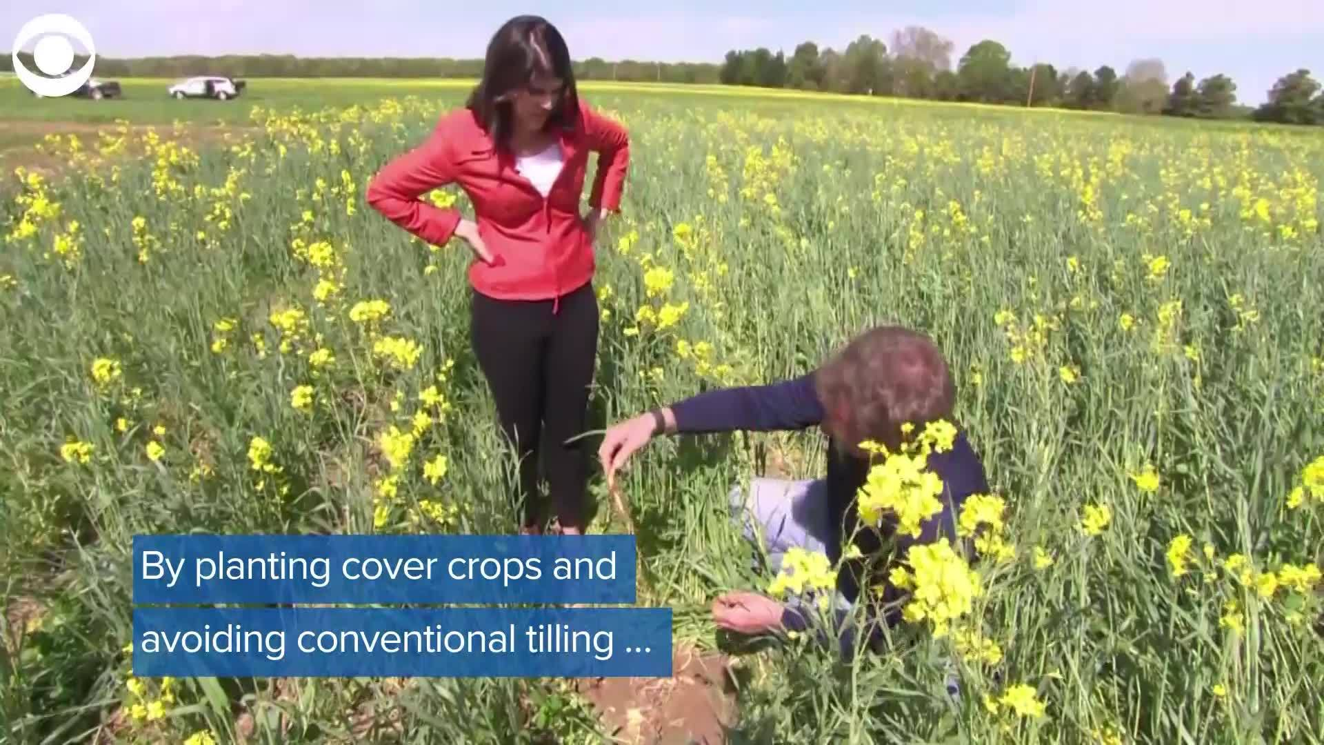 WEB_EXTRA_Climate_Smart_Farming_0_20190507152748