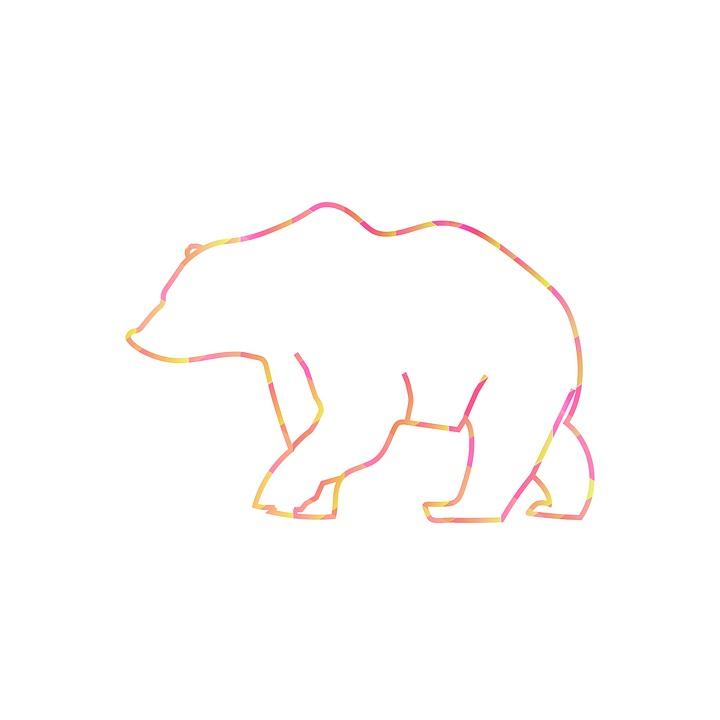 bear-2336251_960_720_1557253146950.jpg