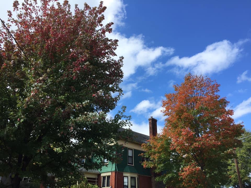 Fall Foliage Report Monday October 7, 2019
